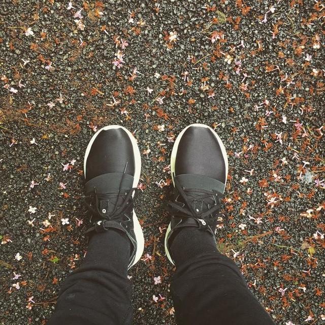 💨 #adidas #adidasoriginals #tubular #tubularviral #tubularruning #running #sneakerhead #sneakerfreak #sneakeraddict #sneakerholics @adidasoriginals 🌸