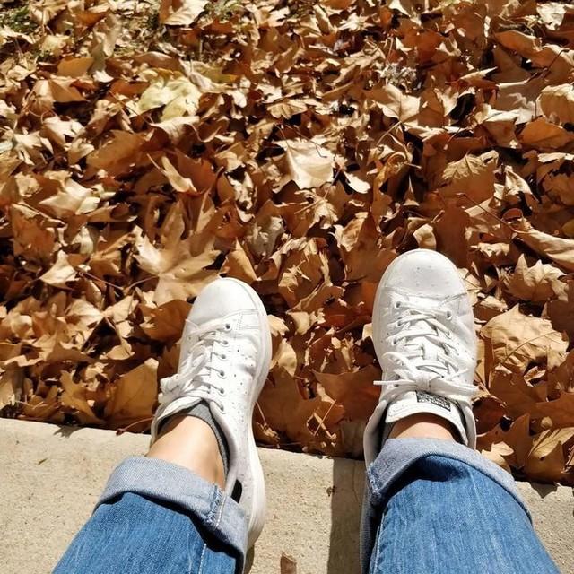 Au soleil d'automne. #lasauveuse #sun #automne #platanes #feuillesmortes #stansmithlovers #stansmith #var #pugetville #sudest #sudestfocus_on #paca #paca_focus_on #southoffrance