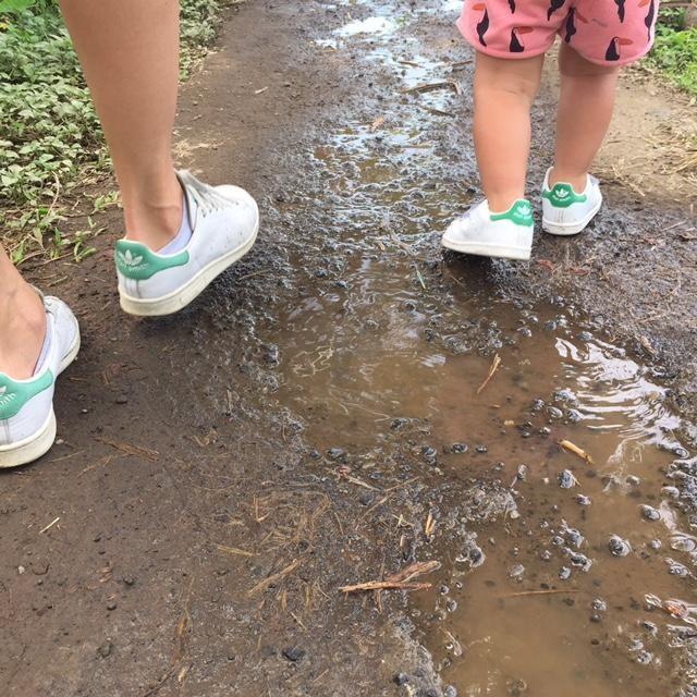 Bali walks